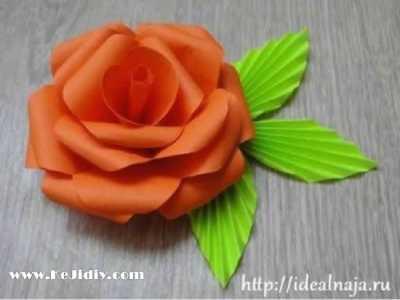 玫瑰花的折法步骤图 儿童玫瑰花的折法图解